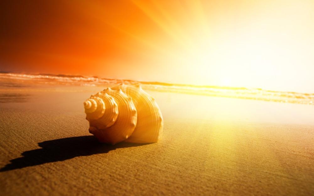 Чтобы предотвратить тепловые (солнечные) удары рекомендуется